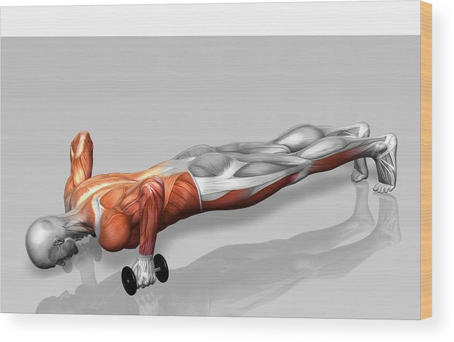 Horizontal Wood Print featuring the photograph Setanta Push Up (part 1 Of 2) by MedicalRF.com