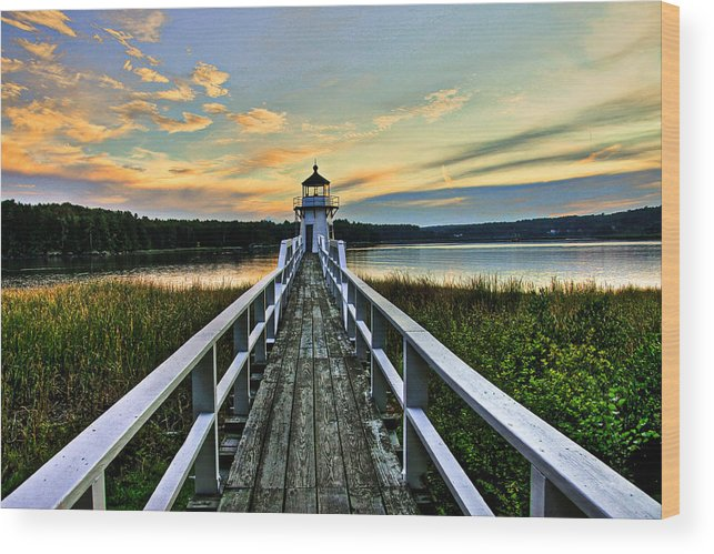 Landscape Wood Print featuring the photograph Sweethearts Walk by Brenda Giasson