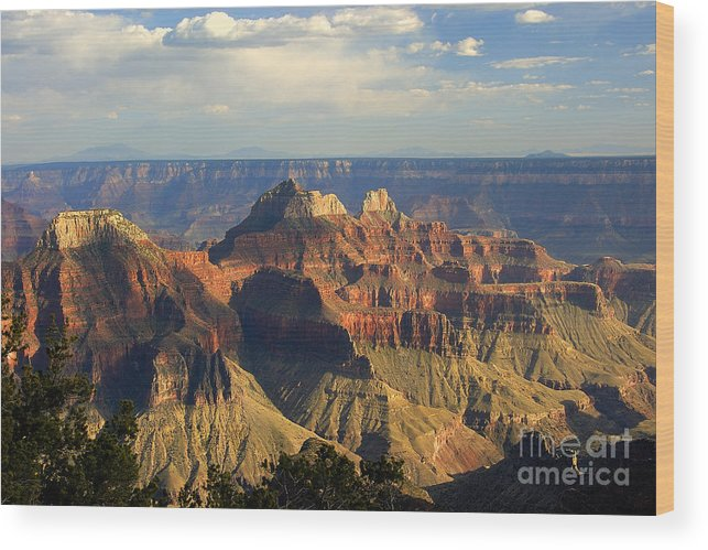 Sunset Wood Print featuring the photograph Canyon Sunset by Neil Doren
