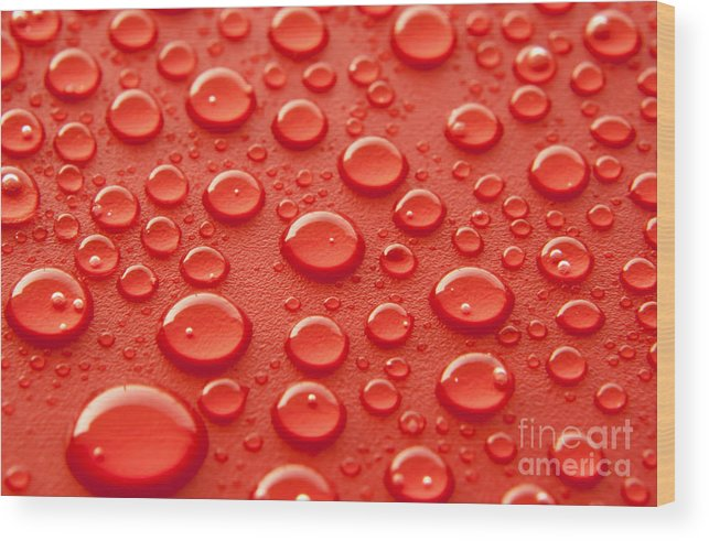 Water Wood Print featuring the photograph Red water drops by Blink Images