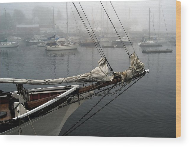 Boats Wood Print featuring the photograph Sailing On Hold by Neil Doren
