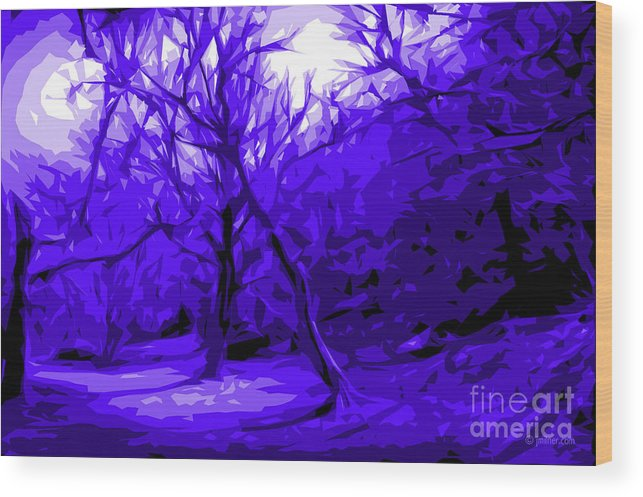 Abstract Landscape Wood Print featuring the digital art Abstract Sanctuary by Jacqueline Milner