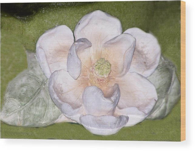 Flower Wood Print featuring the digital art Alien Bloom by Chuck Shafer
