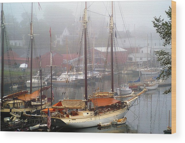 Boats Wood Print featuring the photograph All Dressed Up...Nowhere To Go by Neil Doren