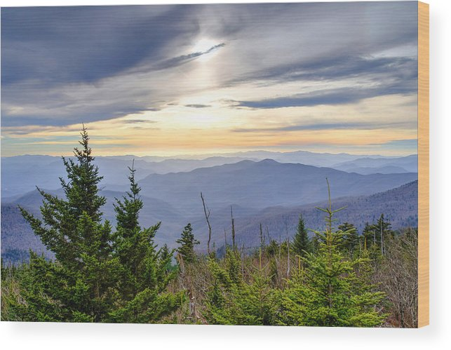 Autumn. Clingmans Dome Wood Print featuring the photograph Apricot Afternoon at Clingmans Dome by Kristina Plaas