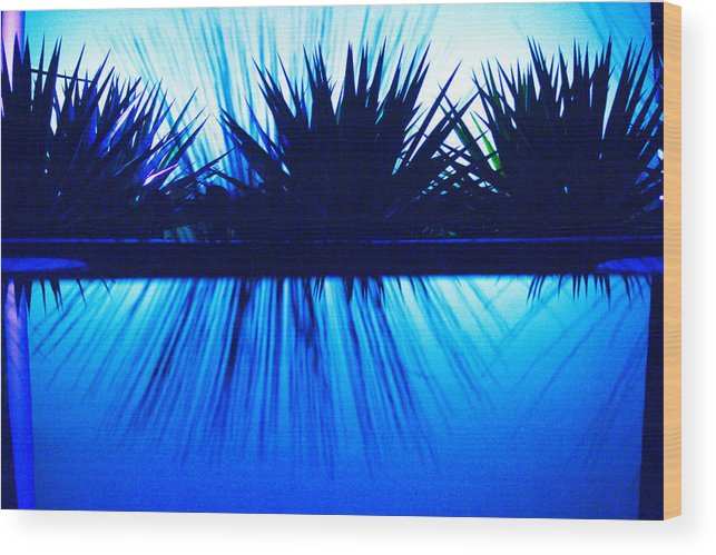 Blue Wood Print featuring the photograph Backlit by Blue by Richard Henne