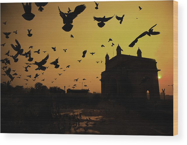 Horizontal Wood Print featuring the photograph Birds In Flight At Gateway Of India by Photograph by Jayati Saha