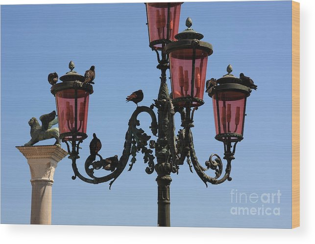 Venice Wood Print featuring the photograph Birds on a Lamp Post in Venice by Michael Henderson