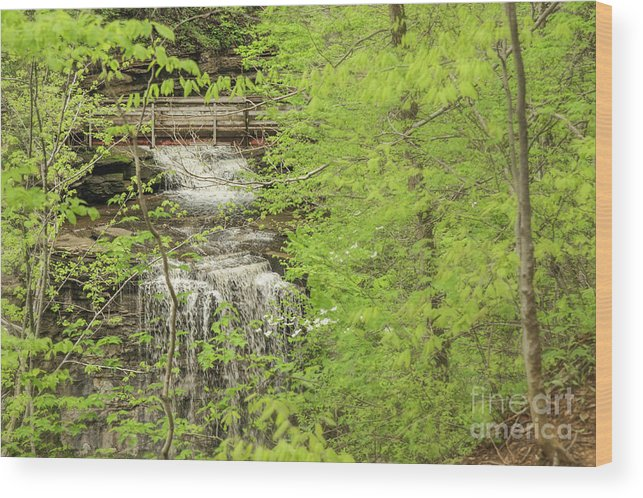 Waterfall Wood Print featuring the photograph Bridge Over Little Clifty Falls by Nikki Vig