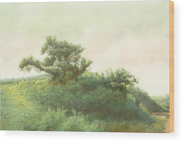 Landscape Wood Print featuring the painting Cape Cod Scrub by Stephen Bluto