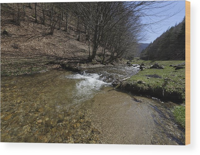 Above Wood Print featuring the photograph Clear water Shteaza near Rasinari by Adrian Bud