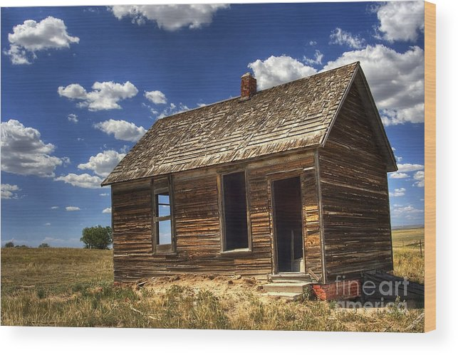 Landscape Wood Print featuring the photograph Colorado Homestead by Pete Hellmann