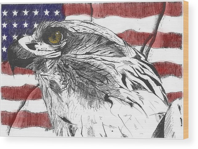 Patriotic Wood Print featuring the drawing Eagle by Nathaniel Hoffman