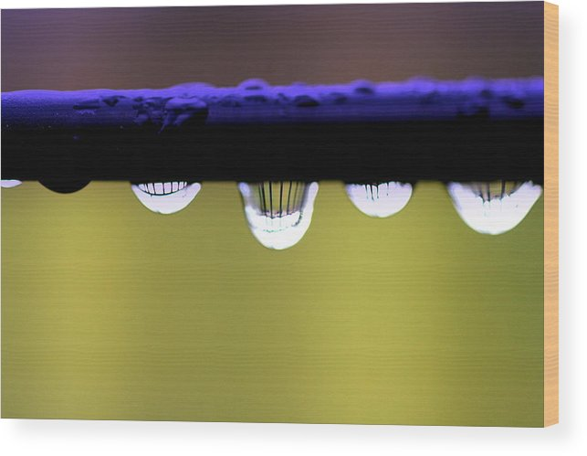 Abstract Wood Print featuring the photograph Fence Reflected by Kerry Reed