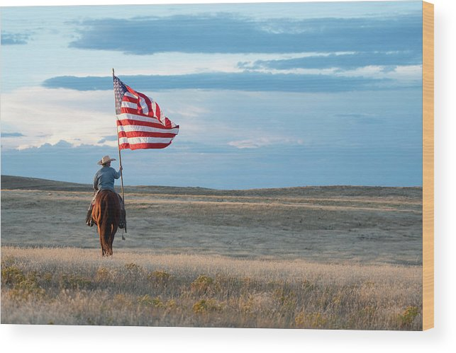Horse And American Flag Wood Print featuring the photograph Flag of Freedom by Pamela Steege