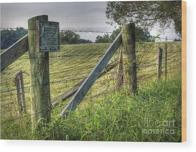 Nature Wood Print featuring the photograph Forbidden View by Pete Hellmann