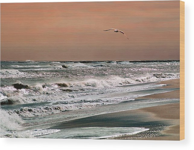 Seascape Wood Print featuring the photograph Golden Shore by Steve Karol