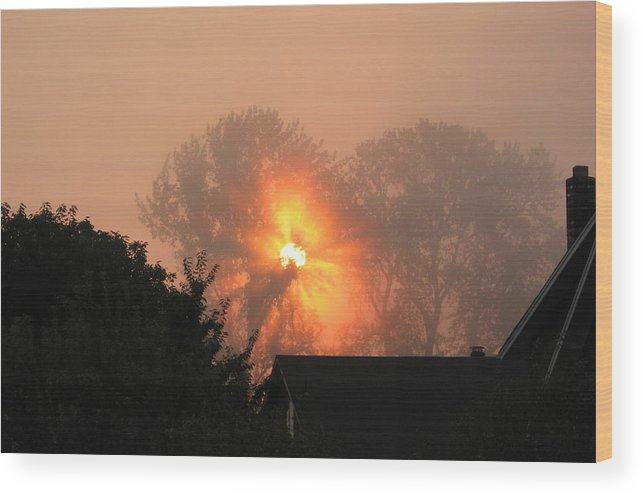 Landscapes Wood Print featuring the photograph Goodnight Kiss by Shari Chavira