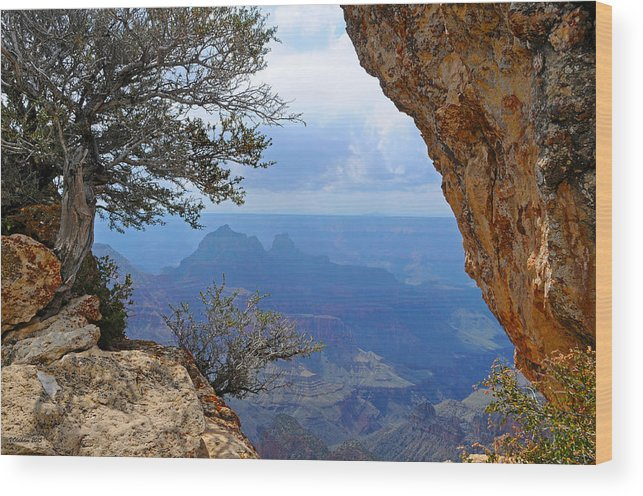 Grand Canyon North Rim Wood Print featuring the photograph Grand Canyon North Rim Window in the Rock by Victoria Oldham