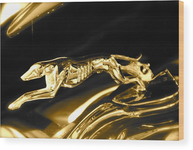 Greyhound Wood Print featuring the photograph Greyhound hoood ornament by Toni Berry