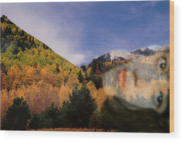 Lockett Meadow Wood Print featuring the photograph Lockett Meadow Looks Back by Richard Henne