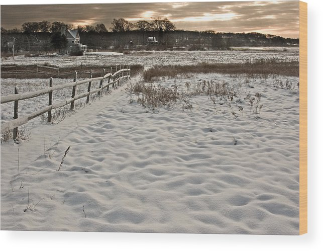 Landscape Wood Print featuring the photograph Marshland Cape Elizabeth Maine by Filipe N Marques