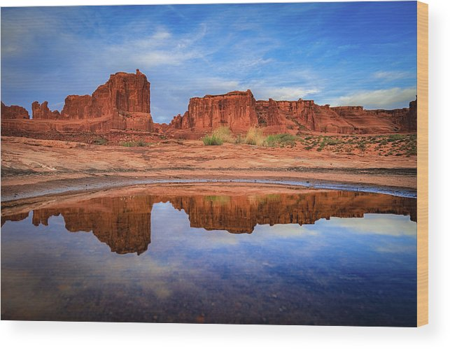 Amaizing Wood Print featuring the photograph Moab Reflections by Edgars Erglis