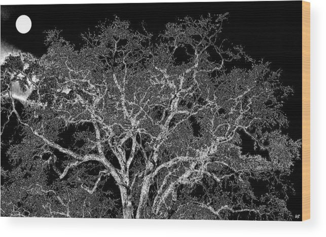 Photo Design Wood Print featuring the digital art Moonlit Night by Will Borden