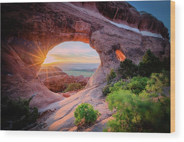 Amazing Wood Print featuring the photograph Morning Glory by Edgars Erglis