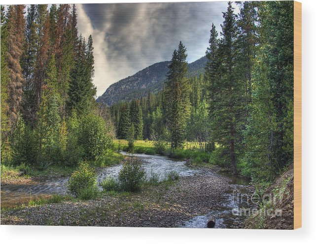 Landscape Wood Print featuring the photograph Mountain Stream 4 by Pete Hellmann