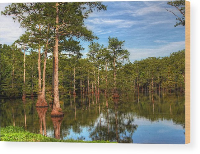 Quiet Wood Print featuring the photograph Quiet Afternoon At The Bayou by Ester McGuire