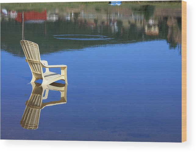 Water Wood Print featuring the photograph Reflections Fine Art Photography Print by James BO Insogna