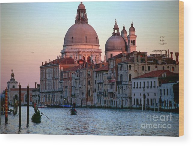 Venice Wood Print featuring the photograph Santa Maria Della Salute On Grand Canal In Venice In Evening Light by Michael Henderson
