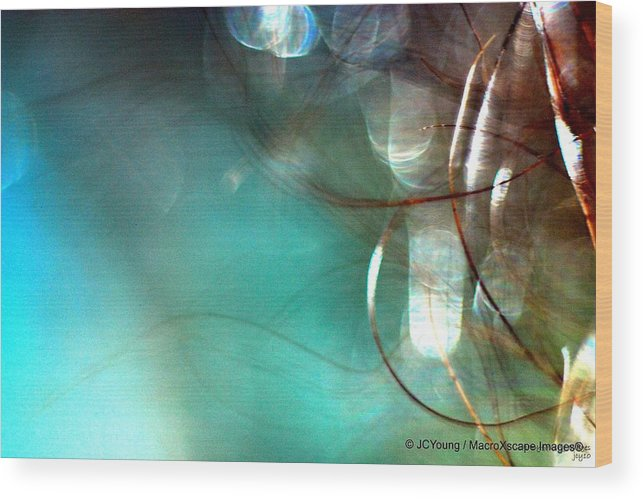 Macroimpressionism Wood Print featuring the photograph Sea World by JCYoung MacroXscape