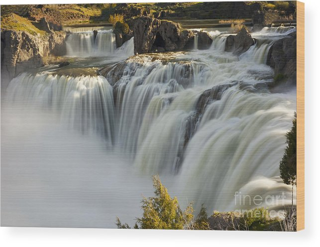 Shoshone Falls Wood Print featuring the photograph Shoshone Falls in Spring by Dennis Hammer