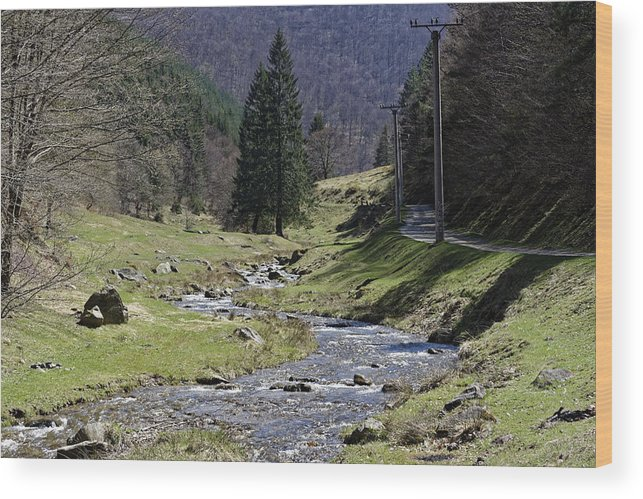 Above Wood Print featuring the photograph Shteaza river clear water near Rasinari by Adrian Bud