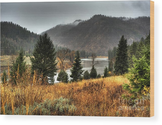 Places Wood Print featuring the photograph Snake River Canyon by Dennis Hammer
