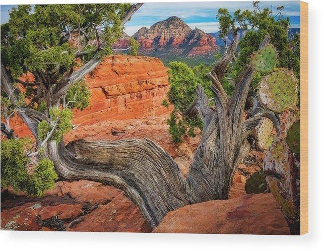 Southwest Wood Print featuring the photograph Split View, Capital Butte, Sedona, Arizona by Zayne Diamond Photographic