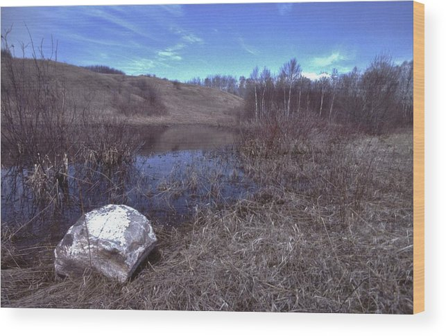Landscape Wood Print featuring the photograph Spring Pond View by Rory Cubel