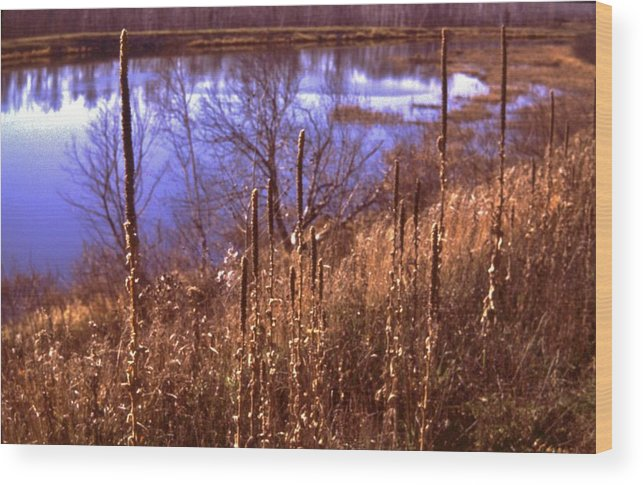 River Wood Print featuring the photograph St. Louis River Shoreline  Duluth Minnesota by Rory Cubel