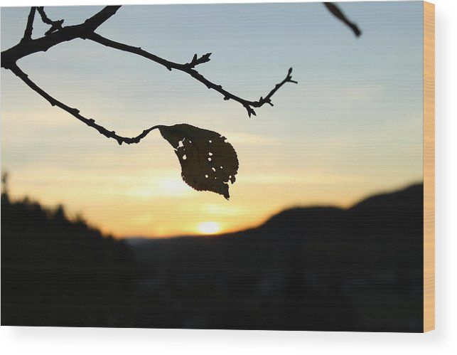 Sunset Wood Print featuring the photograph Sunset by Alena Madosova