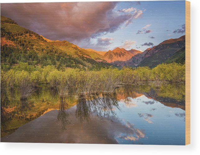 Telluride Wood Print featuring the photograph Telluride Valley Floor 2 by Whit Richardson