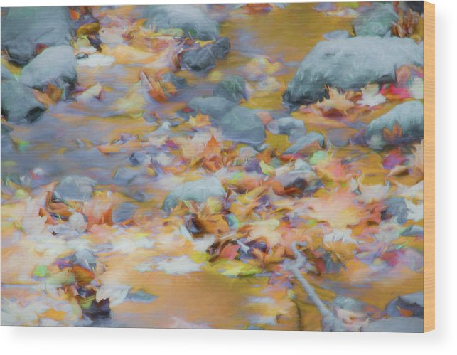 Abstracts Wood Print featuring the photograph The Lightness of Autumn by Marilyn Cornwell