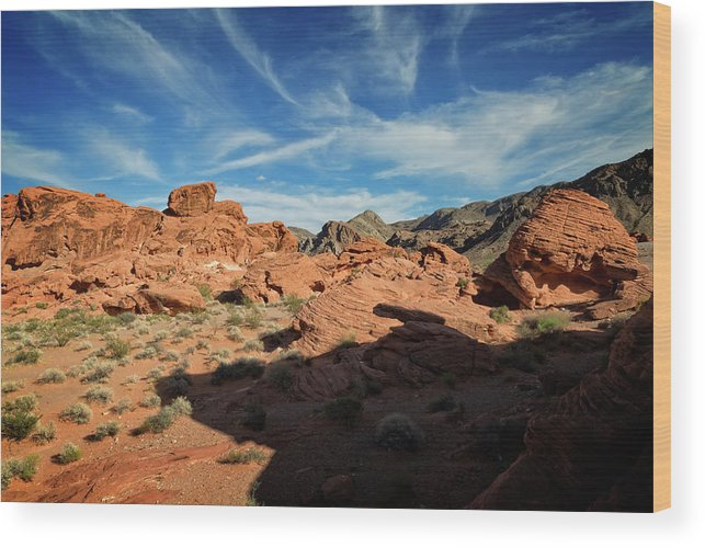 Beehive Wood Print featuring the photograph Valley Of Fire XI by Ricky Barnard