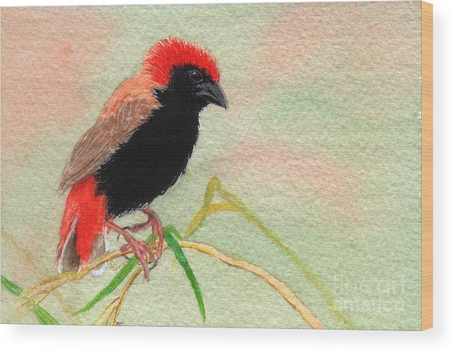 Bird Wood Print featuring the painting Zanzibar Red Bishop by Lynn Quinn