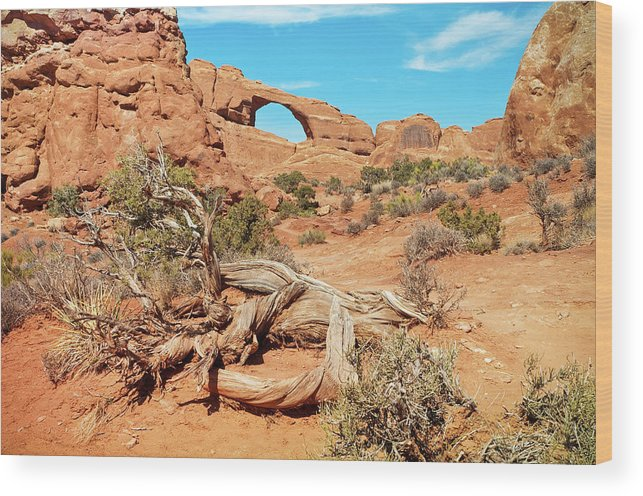 Cedar Tree Wood Print featuring the photograph Skyline Arch, Arches National Park by Fotomonkee