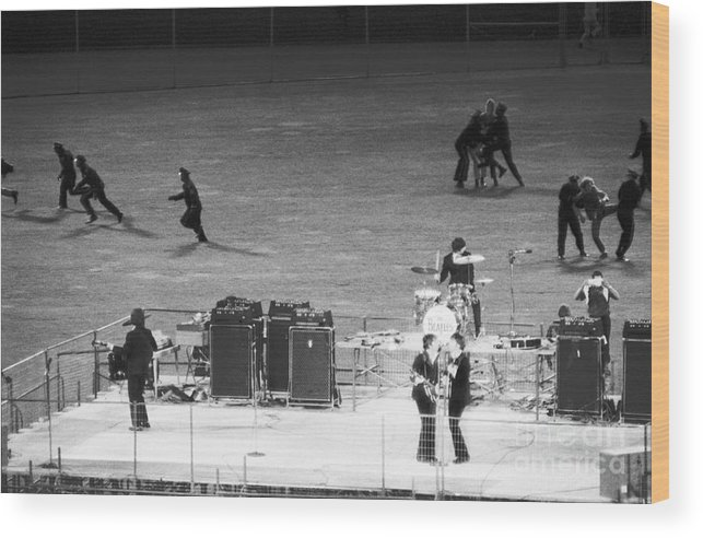 Candlestick Park Wood Print featuring the photograph The Beatles In Concert by Bettmann