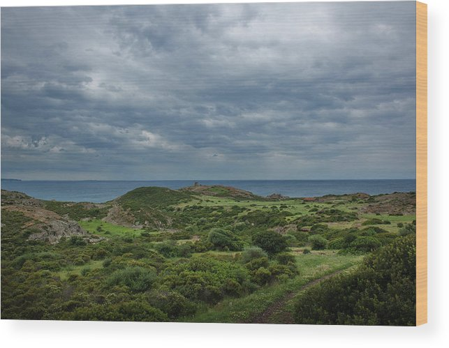 Scenics Wood Print featuring the photograph Torre Argentina Promontory by Maremagnum