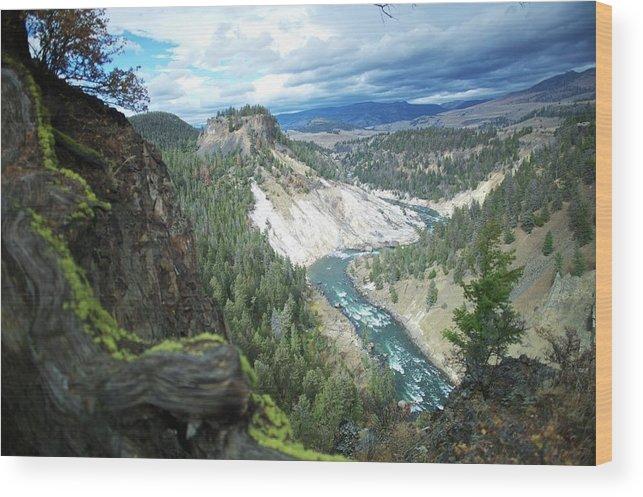 Scenics Wood Print featuring the photograph Yellowstone River by Dominik Eckelt