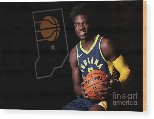 Media Day Wood Print featuring the photograph 2018-19 Indiana Pacers Media Day by Ron Hoskins